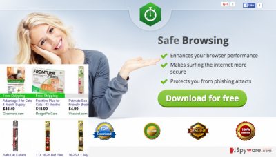 The picture showing Safe Browsing ads