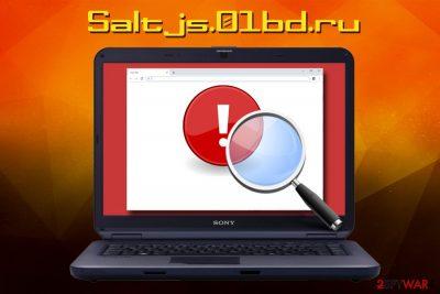 Saltjs.01bd.ru