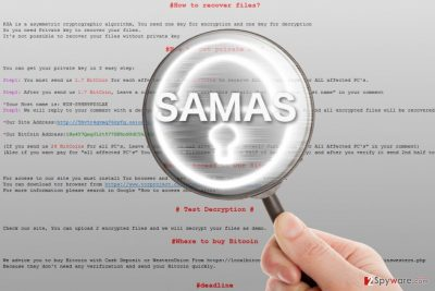 Samas ransomware under the magnifying glass