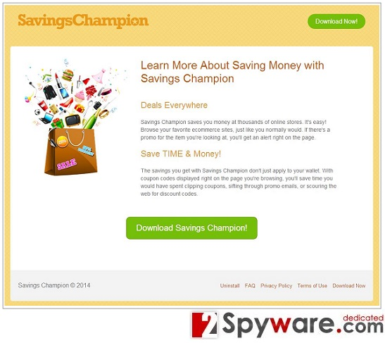 Savings Champion ads snapshot