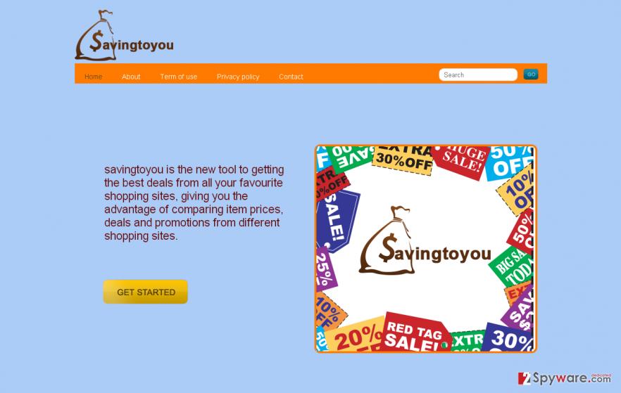 Savingtoyou ads snapshot