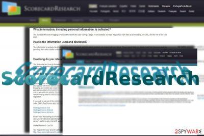 ScorecardResearch website