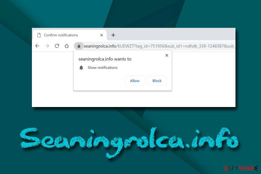Seaningrolca.info