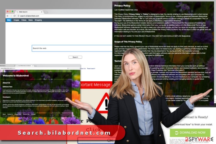 The image of search.bilabordnet.com virus
