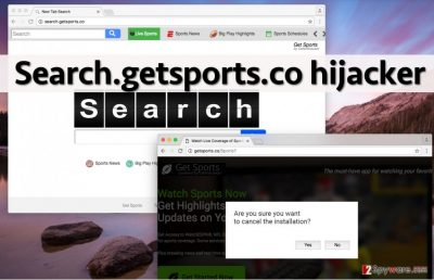 Image showing bogus Search.getsports.co search engine