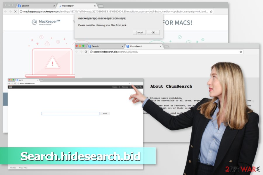 Example of Search.hidesearch.bid virus