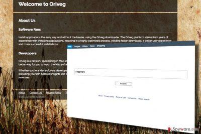 Screenshot of the Search.oriveg.com