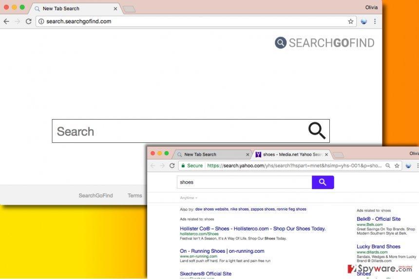 Search.searchgofind.com virus
