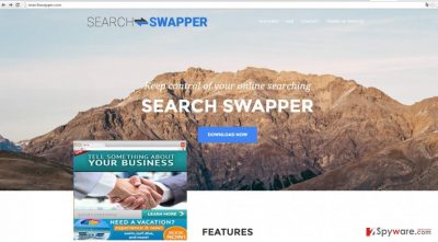 The image revealing SearchSwapper.com