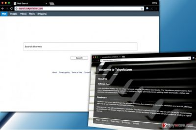 Search.tokyofalcon.com virus