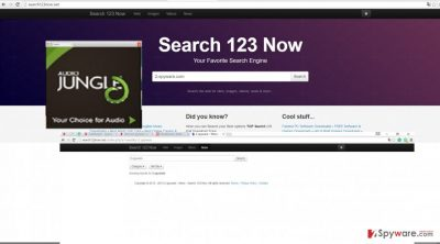 The screenshot of search123now.net
