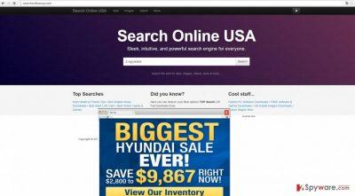 The screenshot of searchonlineusa.com virus