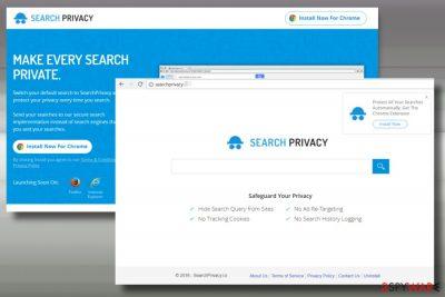 Printscreen of SearchPrivacy.live virus