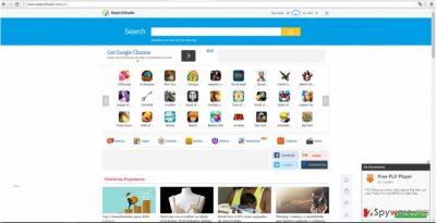 Searchtudo.com virus screenshot