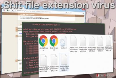Image of the .Shit file extension virus