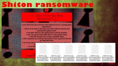 Shiton ransomware