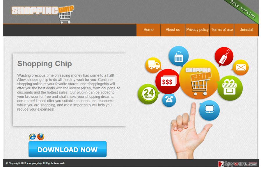 Shopping Chip snapshot