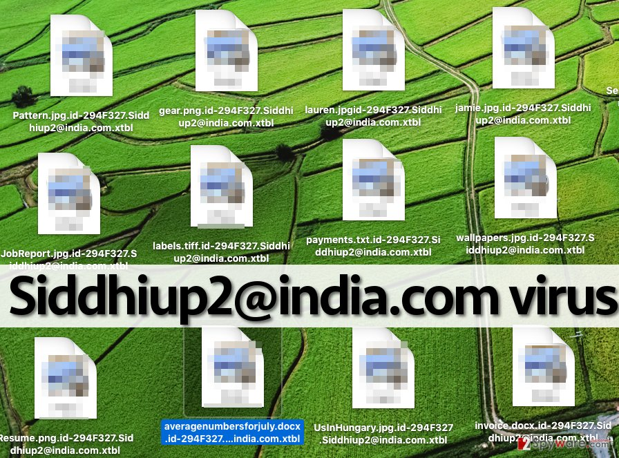 Siddhiup2@india.com virus encrypts files and adds specific file extensions containing unique ID