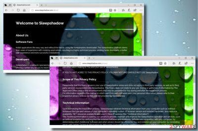 Sleepshadow.com hijack