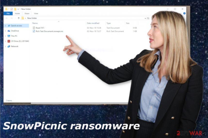 SnowPicnic ransomware virus