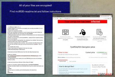 Sodin ransomware virus