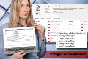 Stinger ransomware