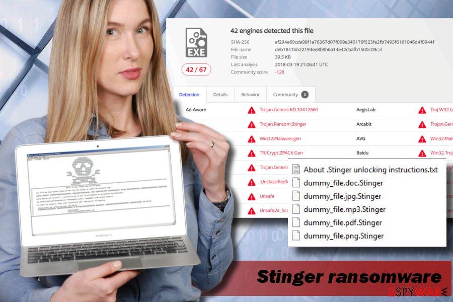 Stinger ransomware illustration