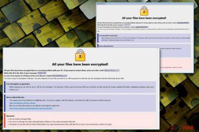 Stun ransomware