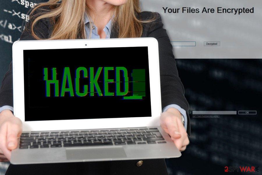 The illustration of Stupid ransomware virus