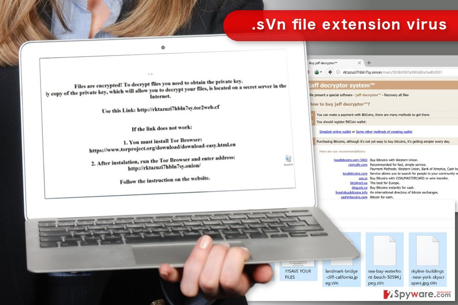 The picture of .sVn file virus