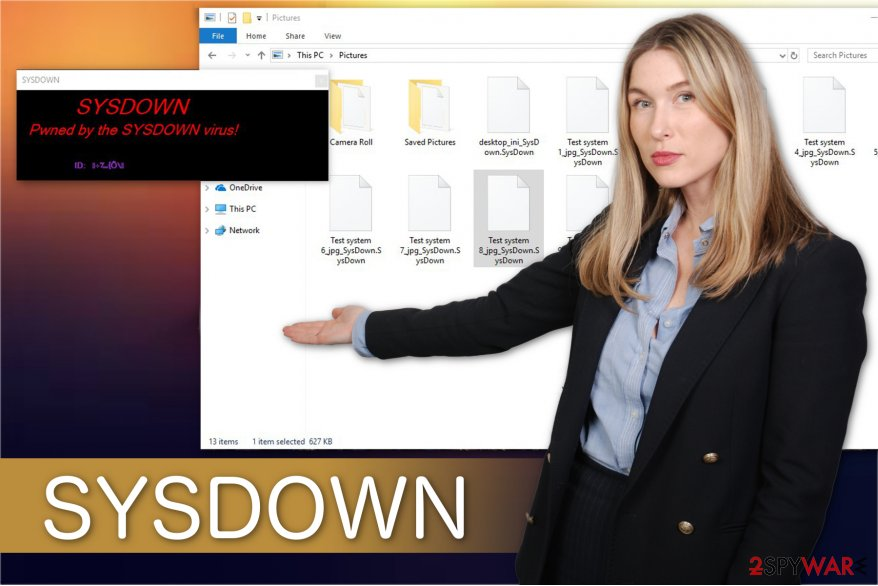 The illustration of SYSDOWN ransomware