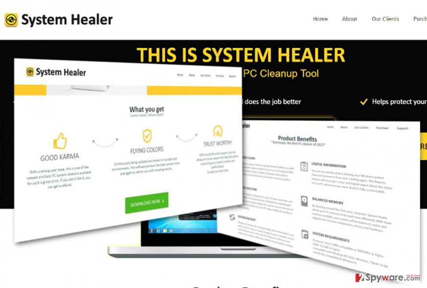 The image displaying System Healer
