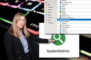 SystemDistrict
