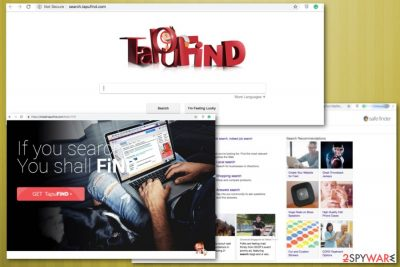 TapuFind fake search engine