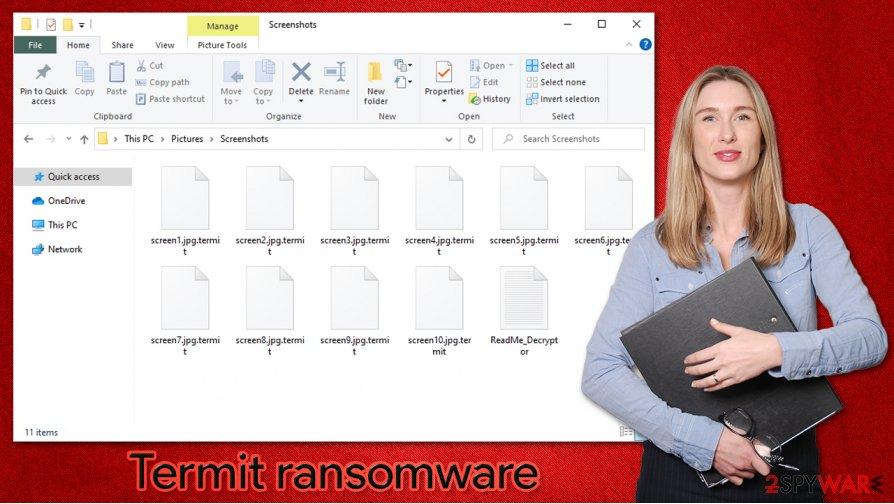 Termit ransomware virus