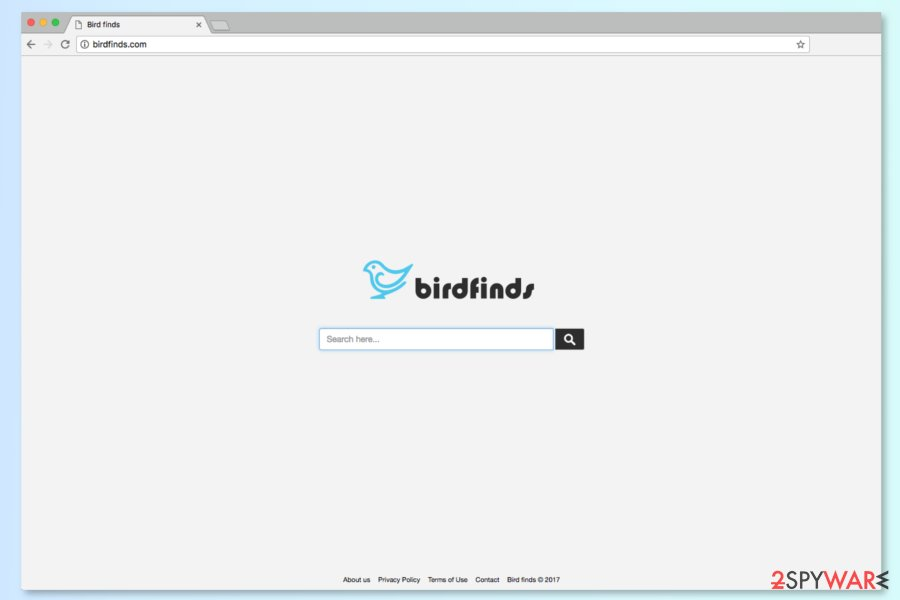 The screenshot of Birdfinds.com search engine