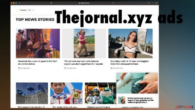 Thejornal.xyz