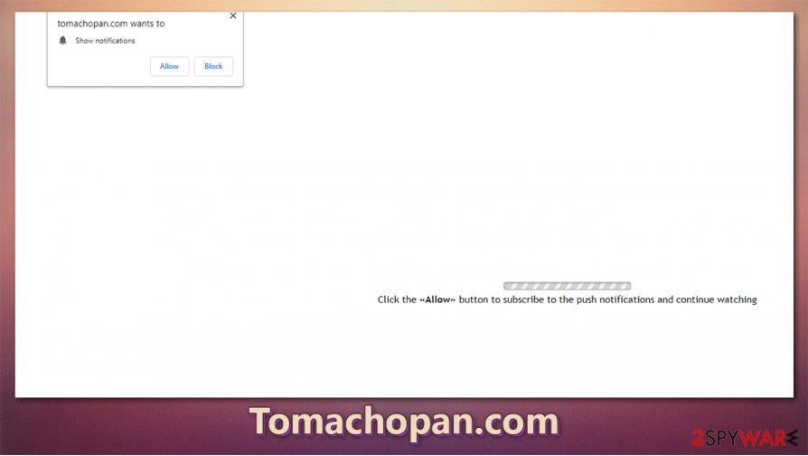 Tomachopan.com