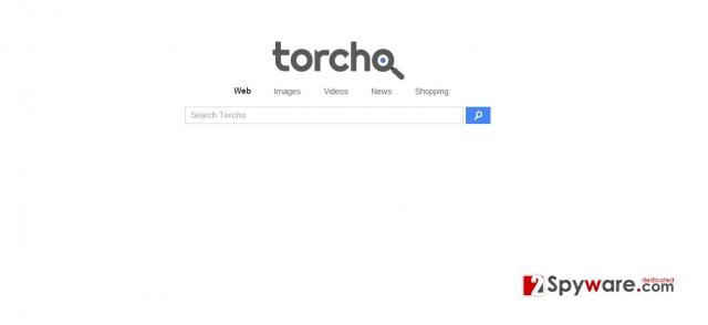 Torcho Web virus snapshot