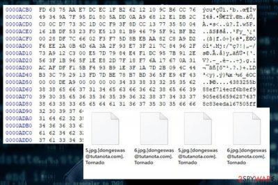 Showing Tornado ransomware