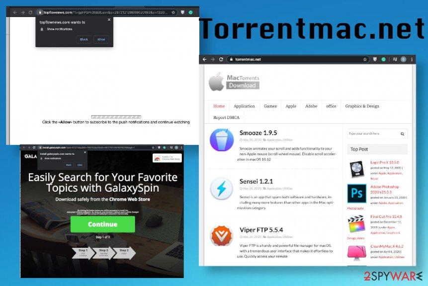 Torrentmac.net