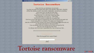 Tortoise ransomware