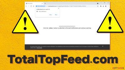 TotalTopFeed.com