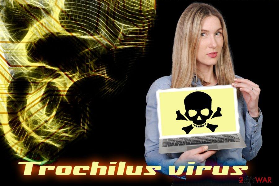 Trochilus RAT
