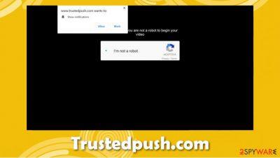 Trustedpush.com