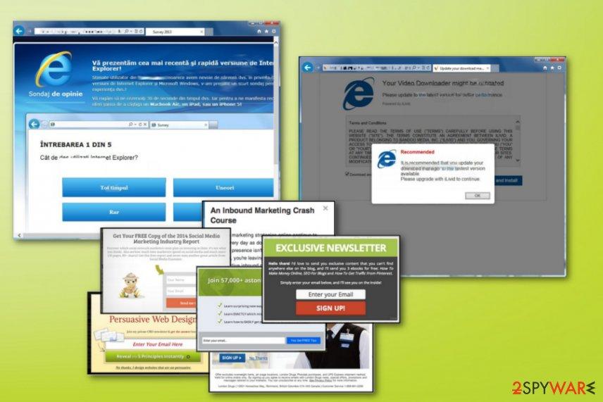 Udmserve.net virus