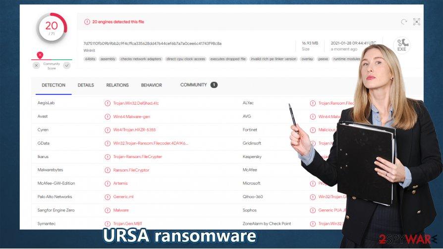 Ursa ransomware virus