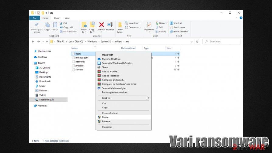 Vari files virus hosts file