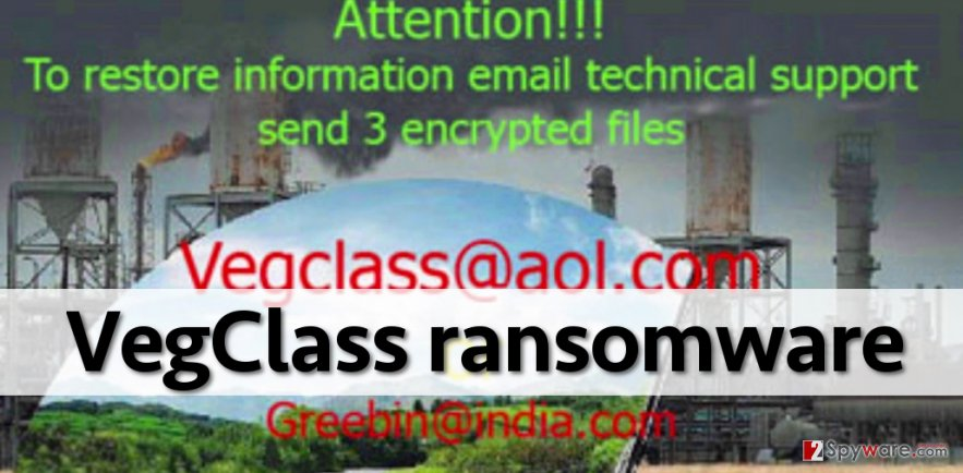 Vegclass malware encrypts files and demands ransom