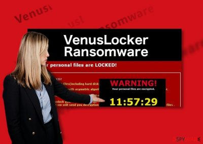 An illustration of the VenusLocker ransomware